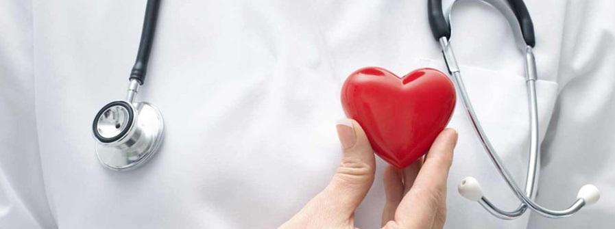 cardiovascular-system_profilaktika-zabolevaniy-serdtsa
